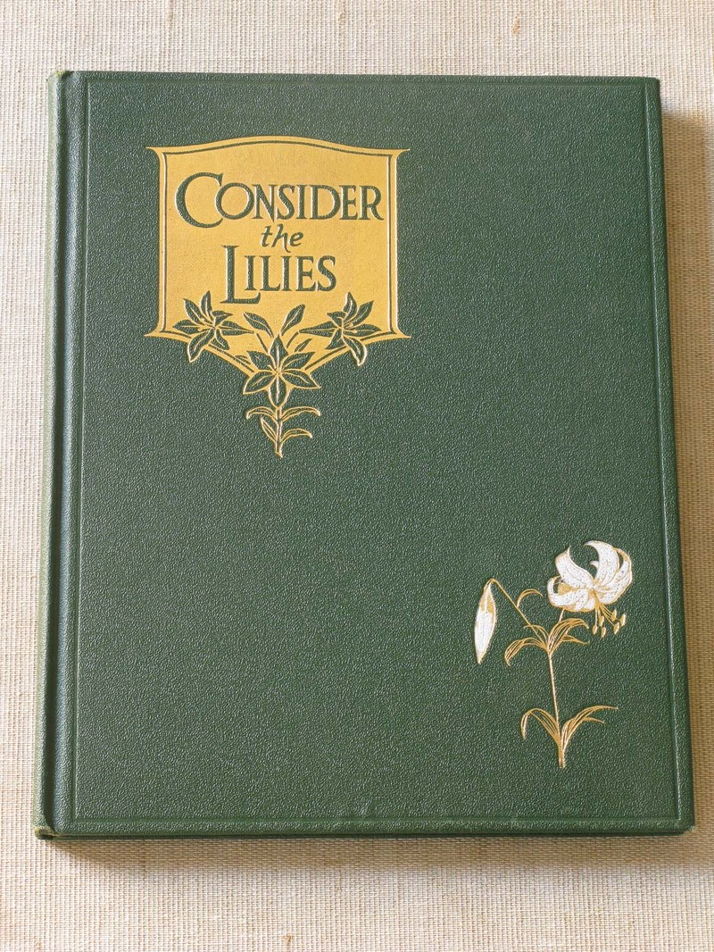consider the lilies Buy consider the lilies by iain crichton-smith from amazon's fiction books store  everyday low prices on a huge range of new releases and classic fiction.