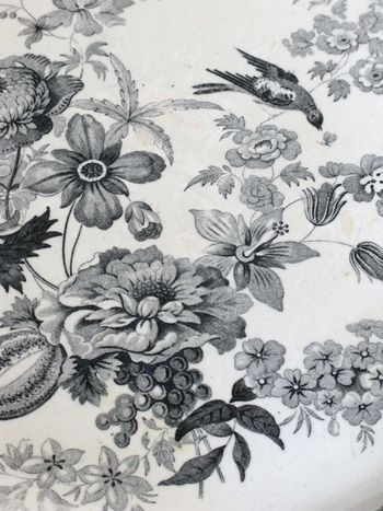 Plate detail2