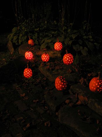 CarvedPumpkins.Outside