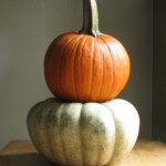 Traditional and Untraditional Pumpkin Arrangements