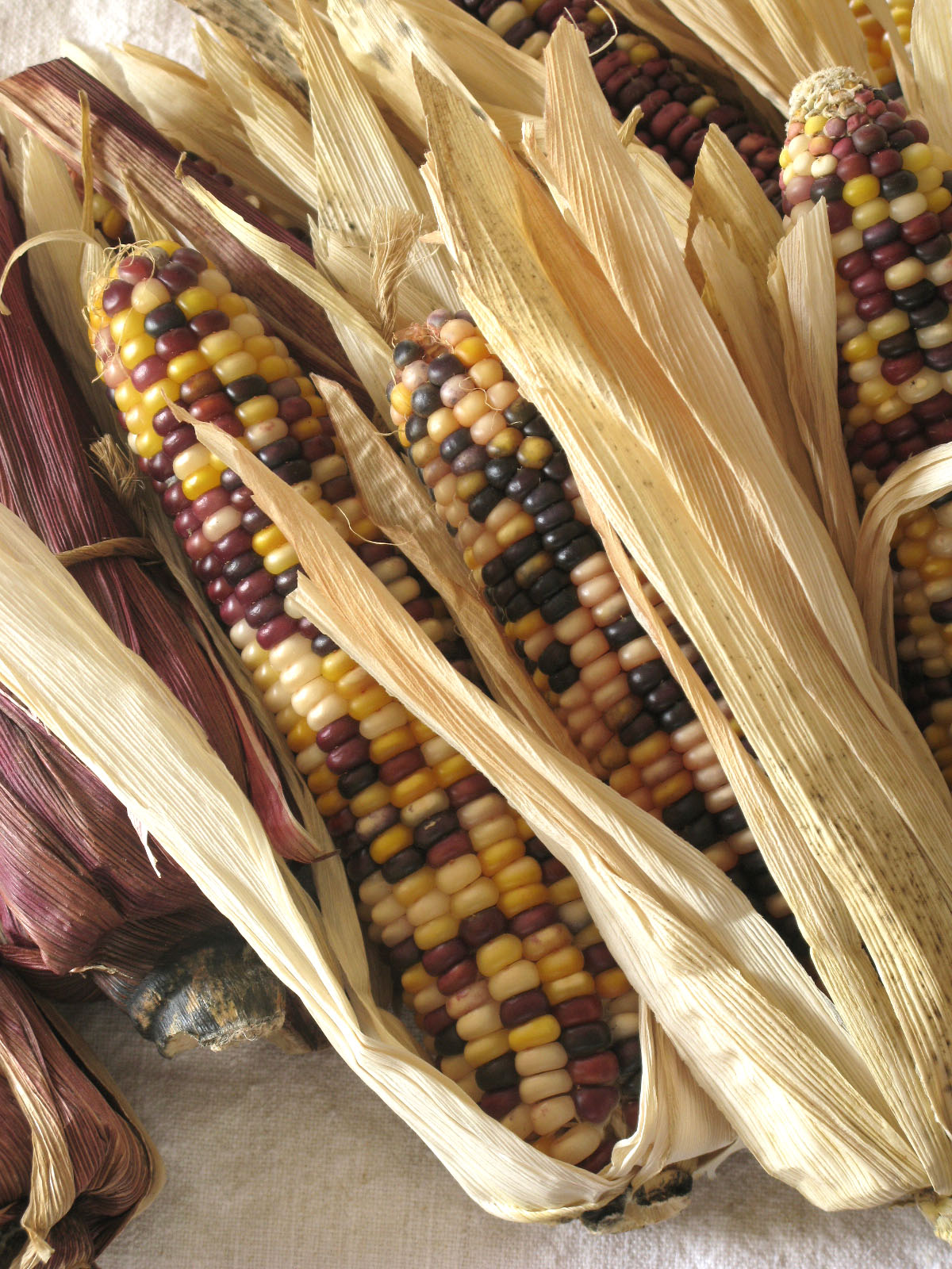 187 Indian Corn Centerpiece