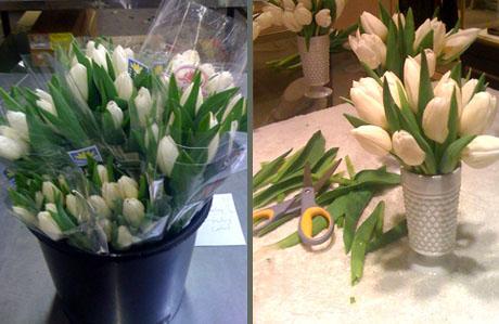 FlowersComp2