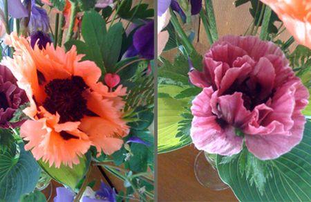 Poppiescomposite