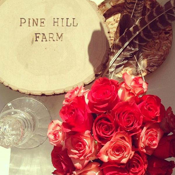 PineHillFarm